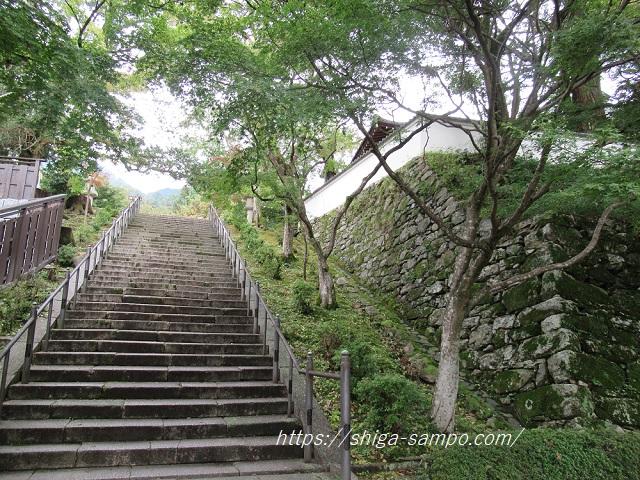 西教寺 石段