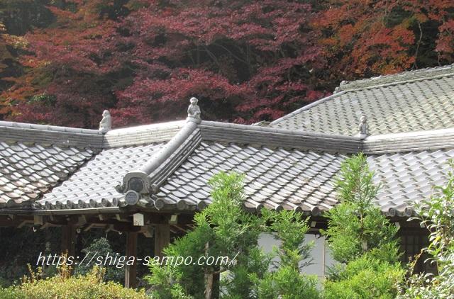 西教寺の屋根の猿