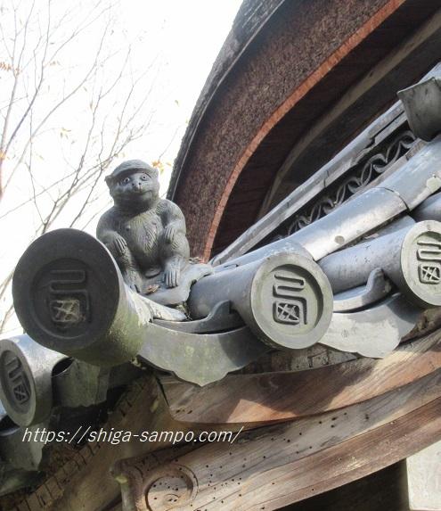 西教寺の猿
