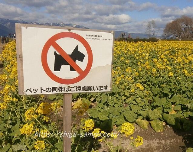 なぎさ公園 ペット禁止