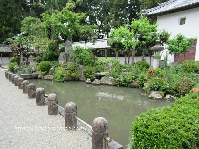 沙沙貴神社 池