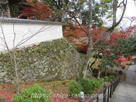 西教寺の石垣(穴太衆)